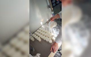 Fabrication des yaourts au lait de chèvres